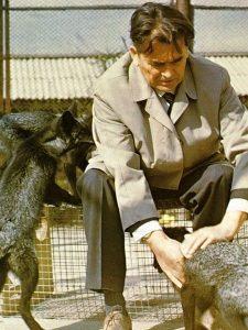 Dmitry Belyaev zoolog